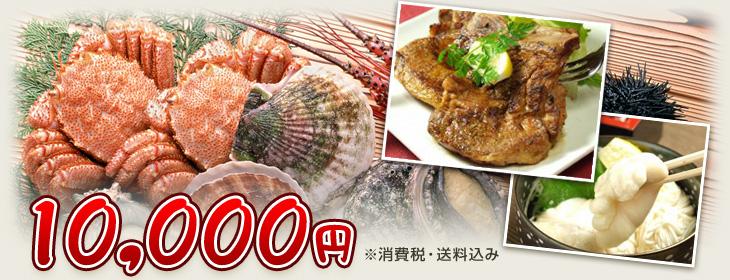 消費税・送料込み10,000円